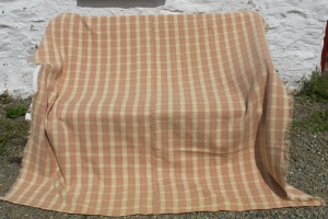 Unusual C19th narrow loom blanket - 3